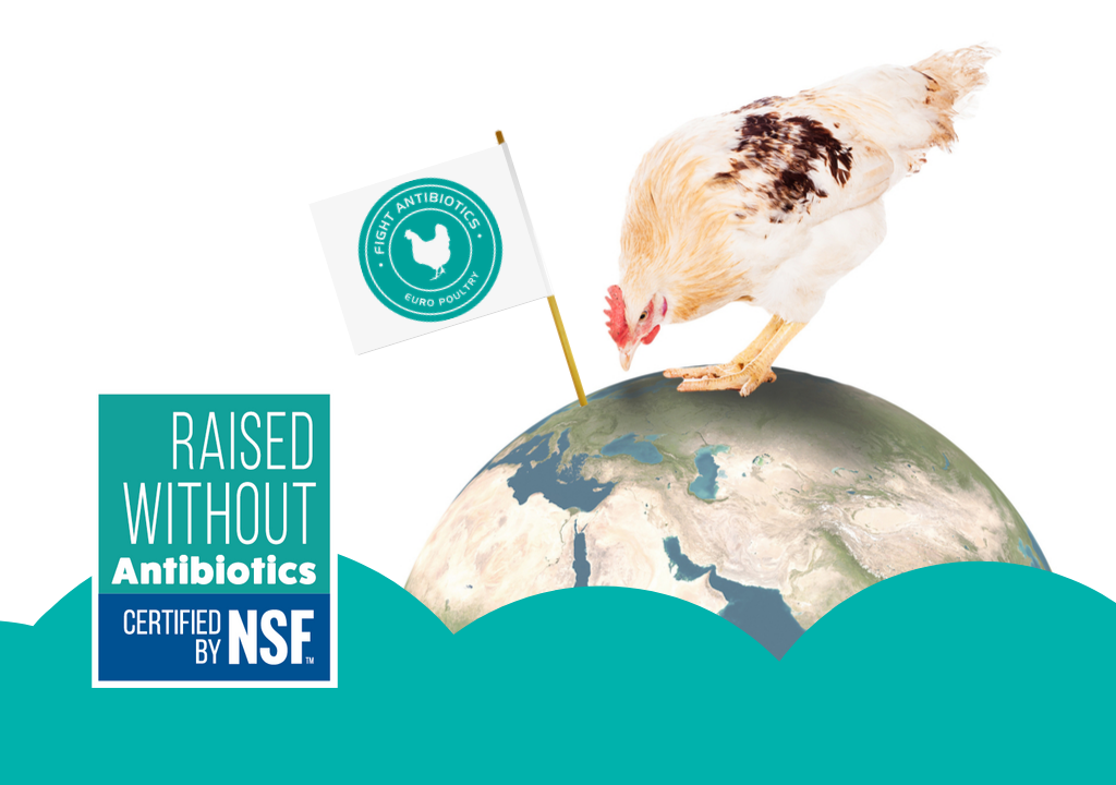 antibiotikafri kylling RWA produkter Top Table Euro Poultry NSF fight antibiotics